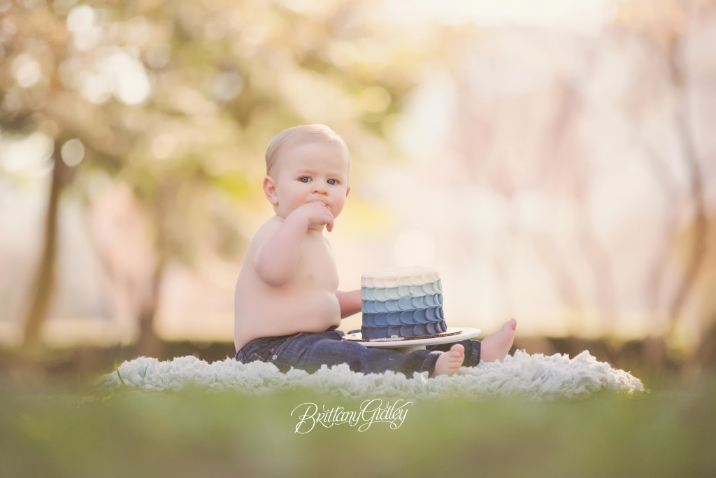 Cake Smash Photographer | Leighton 12 Months | Cleveland Museum of Art