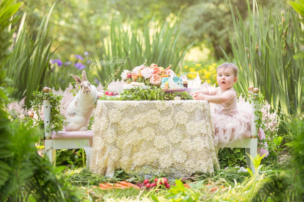 Some Bunny is Turning One | Julianna 12 Months | Dream Session