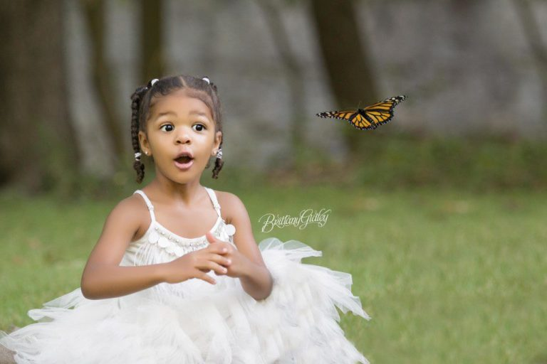 Dream Session | Butterflies | Child Photographer | Cleveland Ohio | Brittany Gidley Photography LLC