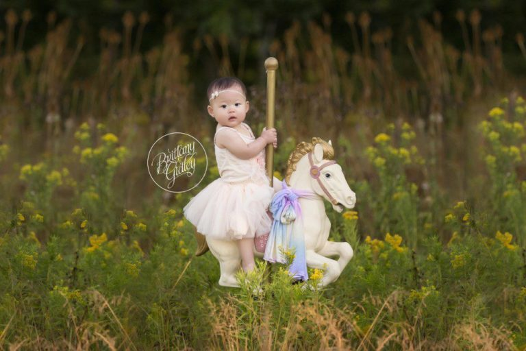 Rainbow Dream Session | Rainbow Baby | 12 Months | Carousel Horse | Baby Photography Ideas