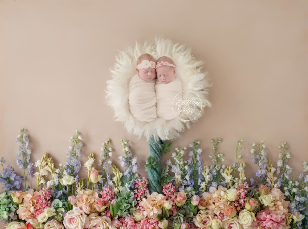 Twin Newborn Photographer | Introducing Ava & Alessandra