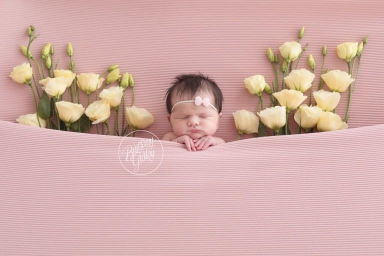 Floral Newborn Dream Session   Award Winning Newborn Photography   Newborn Photo Shoot Inspiration