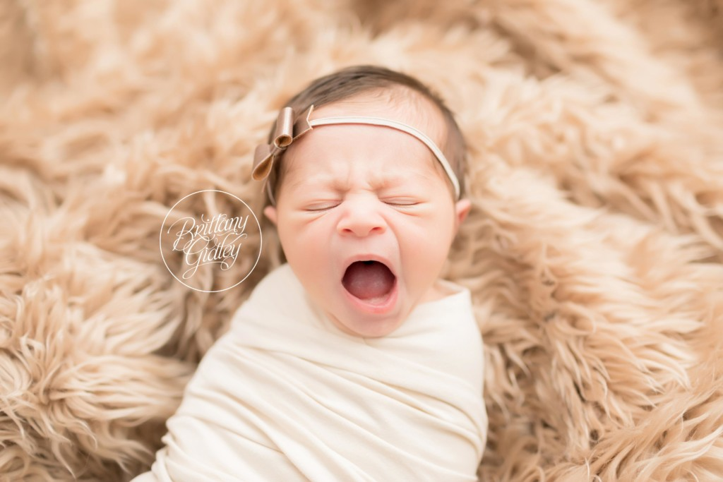 Gates Mills Newborn Photographer | Introducing Eden