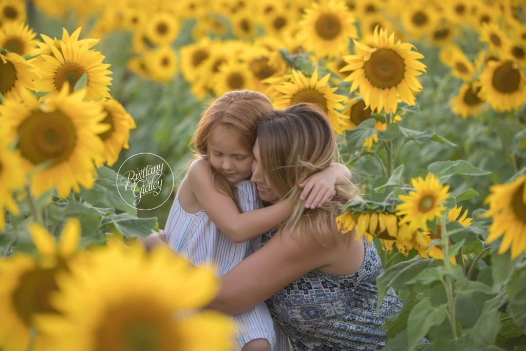 Westlake Family Photographer | The McEwen Family | Prayers From Maria Sunflower Field