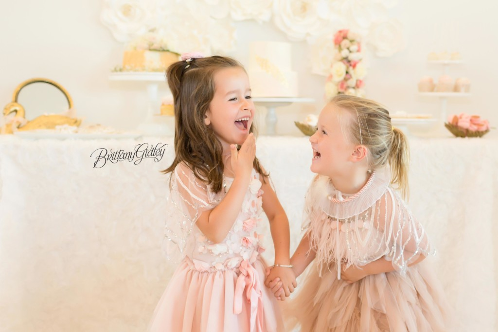 Swan Queen Birthday Party | Swan Queen Dream Session