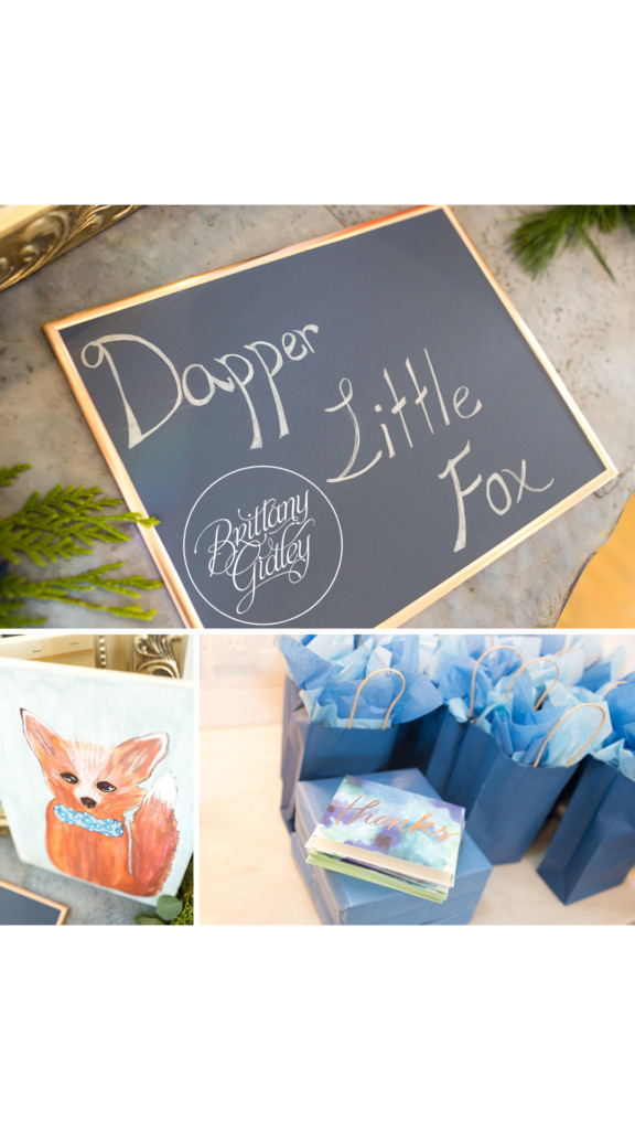 Dapper Little Fox Baby Shower | Baby Boy Sprinkle | Indianapolis Baby Shower Photographer