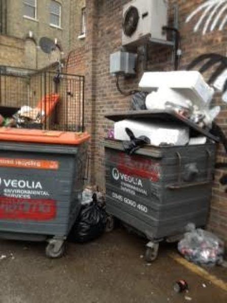 Overflowing rubbish bins on Vining Street