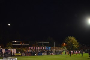 Pink and blue army assembled under moonlight