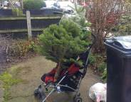 recycled pram and xmas tree