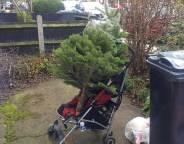 recycled pram and xmas tree