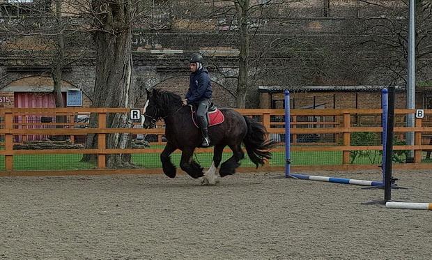 In photos: Wyck Gardens, Ebony Horse Club and Barrington Road blocks