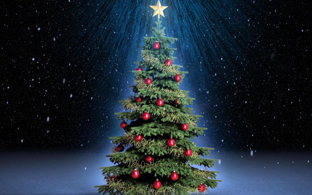 the brixton buzz guide to where you can buy a real christmas tree in brixton - Best Place To Buy A Christmas Tree