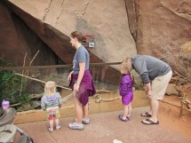 HD Zoo Desert Dome 02