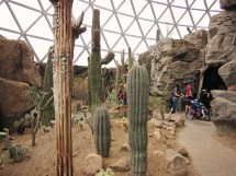 HD Zoo Desert Dome 11