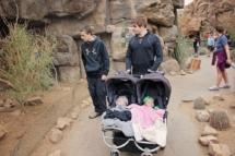 HD Zoo Desert Dome 29