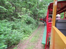 HD Zoo Train 21