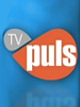 TV Puls in upbeat mood