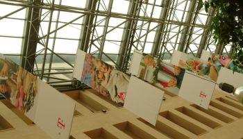 Chris Dziadul Reports: Telekom in CEE – an update