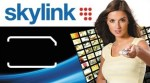 Skylink promotes Disney Channel