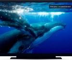 BBC introduces restart across smart TVs