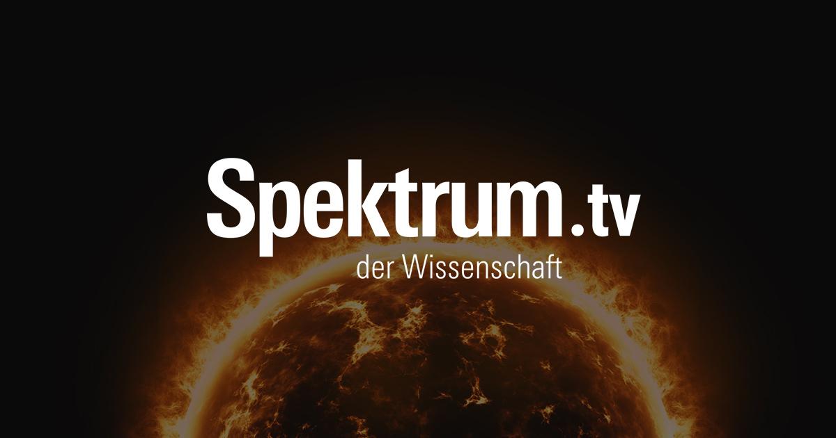 Alchimie and Spektrum der Wissenschaft launch German SVOD service