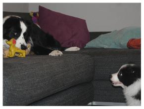 28|02|2011 – Ida und Nell