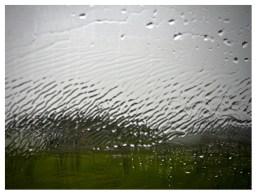 Regenwetter, Autoscheibe, Urlaub mit Hund
