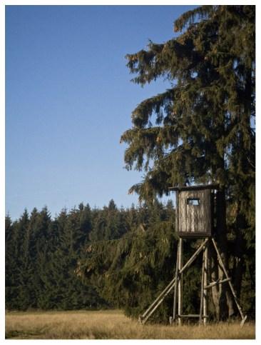 21|11|2011 – Hochhaus in Waldrandlage, sofort beziehbar