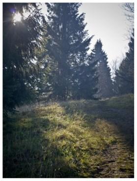 21|11|2011 – Morgens im Westerwald
