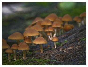 30|09|2012 – Herbstboten