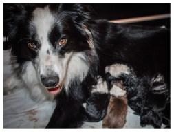 13|11|2012 – Mutterglück