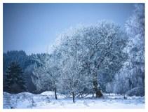 26|01|2013 – Winterlandschaft bei Ailertchen