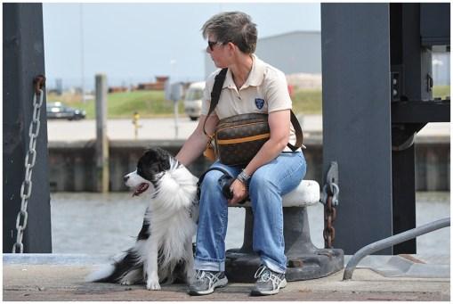 Joey auf Norderney – Warten auf die Fähre