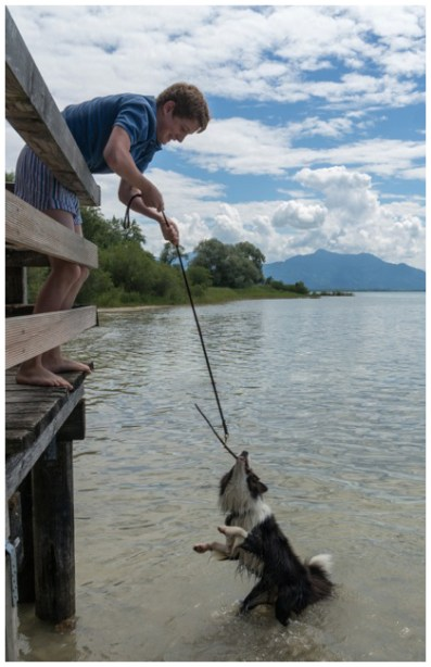 Pepper am Chiemsee: Hundeangeln