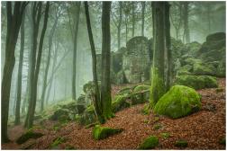 21|09|2014 – Nebel am Hochstein