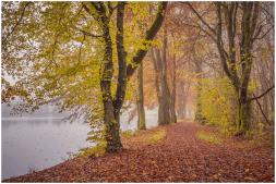 31|10|2014 – Großer Weiher bei Seck