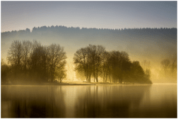 11|03|2015 – Morgen am Wiesensee