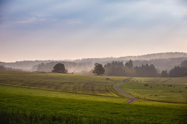 27|09|2017 – Morgenspaziergang