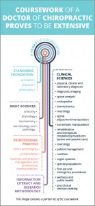 infographic-education-v2-b