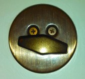 So, after finding out about Faces Everywhere, Shannon got into the act, too, spotting this 'Dead Duck Bolt.'