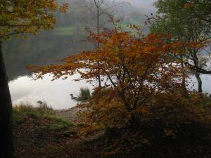 October colours Grasmere