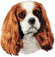 Hundbrodyr Cavalier king charles spaniel brun/vit