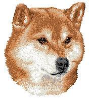 Hundbrodyr Shiba
