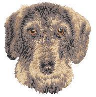 Hundbrodyr Strävhårig tax