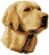 Hundbrodyr Labrador reteriever gul
