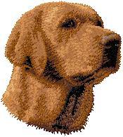 Hundbrodyr Labrador reteriever choklad