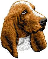 Hundbrodyr bassethound