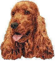 Hundbrodyr Engelsk cocker spaniel