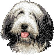 Hundbrodyr Bearded collie