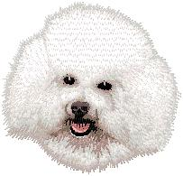 Hundbrodyr Bichon Frise